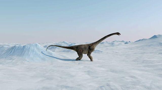 Πιερία: Σούπερ χειμώνας ευθύνεται για την εξαφάνιση των δε...