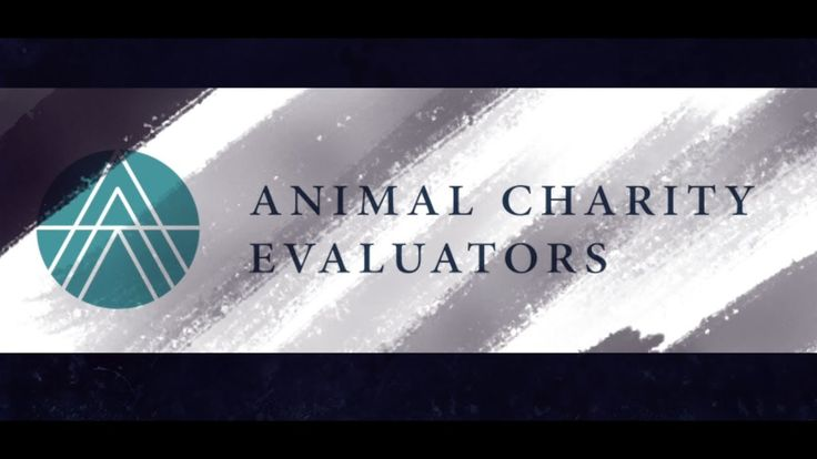 Does SHARK expose corruption between Animal Charity Evaluators and affiliations with Nick Cooney? Do you feel this is deceitful?