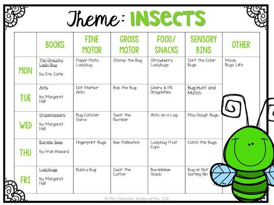 Tot School  Insects