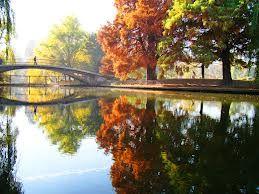 A beautiful autumn day in Cismigiu