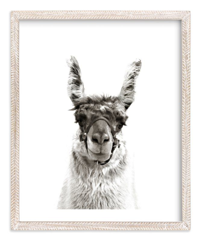"""""""llama"""" - Art Print by Baumbirdy in beautiful frame options and a variety of sizes."""