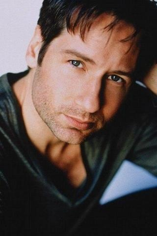 David Duchovny - I love X Files. I know he has issues, but i still think he's hot :-)