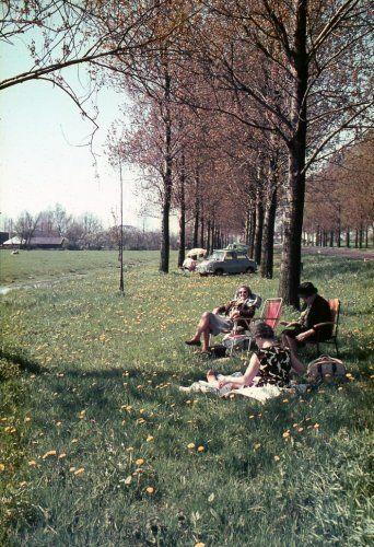 Bermtoerisme. Nadat de auto aan de kant van de weg is gezet, gaat men iets verderop zonnen en lezen in klapstoelen. Zonder plaats, ca. 1965.