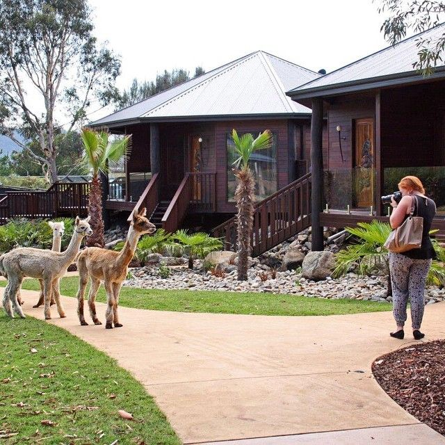 Three accommodation precincts are available at the National Zoo & Aquarium's much anticipated Jamala Wildlife Lodge, each with their own wildlife experience. Will this experience be on your 2015 Canberra bucket list? #CBRbucketlist #visitcanberra