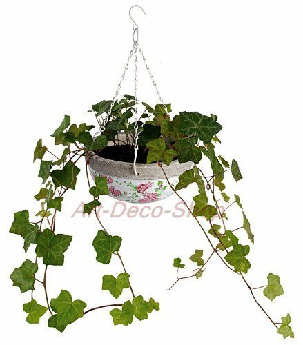 Flower Baskets Usa : Best images about gardening plant containers on