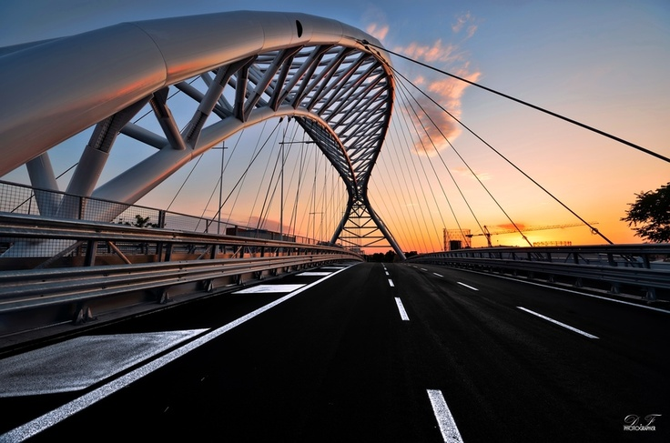 The Bridge of Science - Rome
