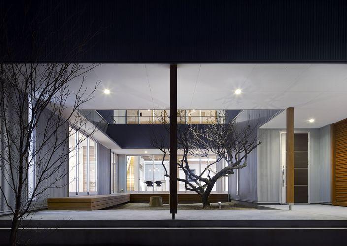 梅ノ木のある家
