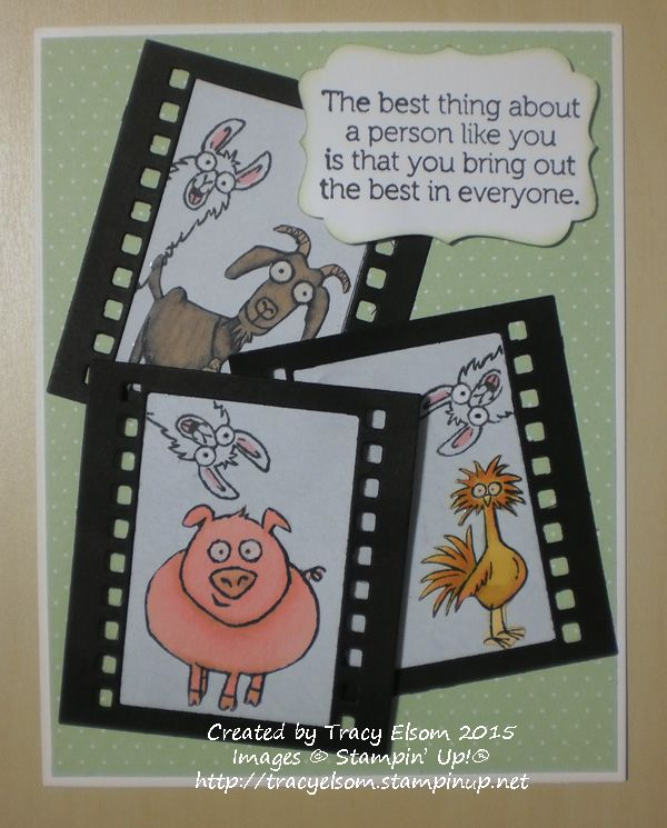 A fun card designed by Tracy Elsom using the From the Herd stamp set from the Stampin' Up! 2015 Occasions Catalogue. http://tracyelsom.stampinup.net