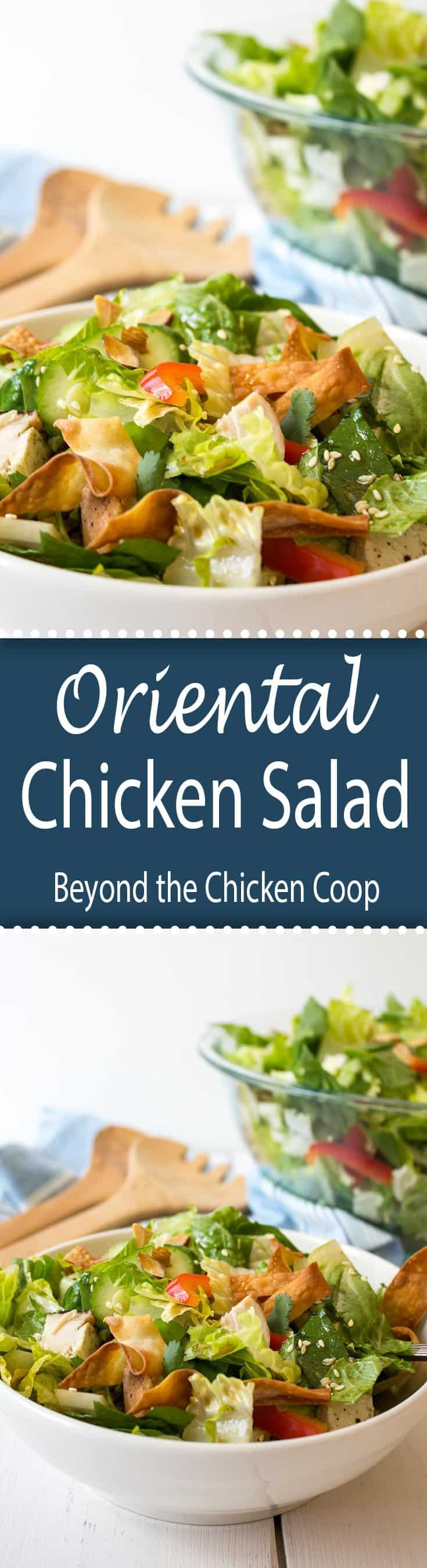 This Oriental Chicken Salad is perfect for lunch or as a light dinner.  via @Beyondthecoop