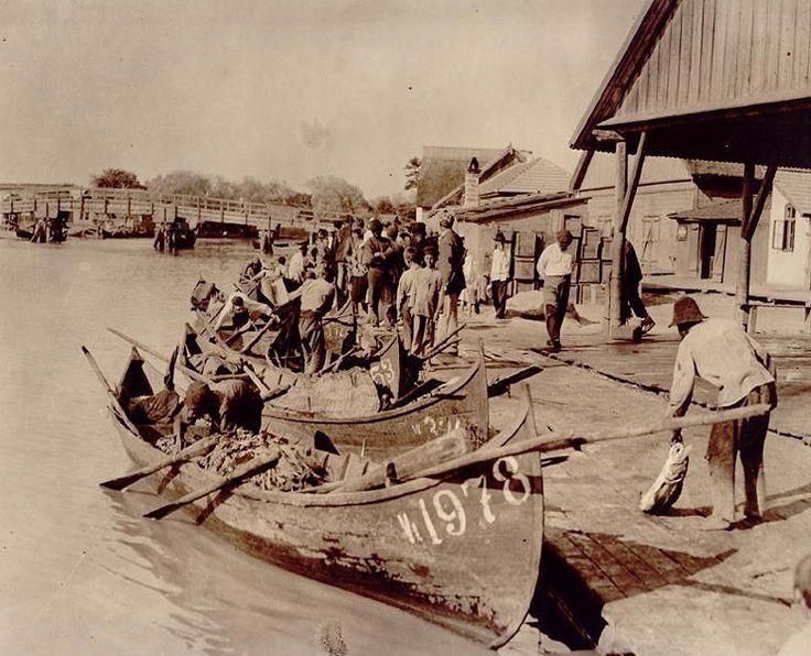 Номер лодки 1978.В советское время последний номер был где-то 3-х тысячный.