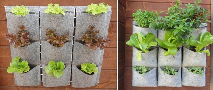 Colecci n de jardineras recicladas v de vertiflor para for Planta arbustos para jardineras