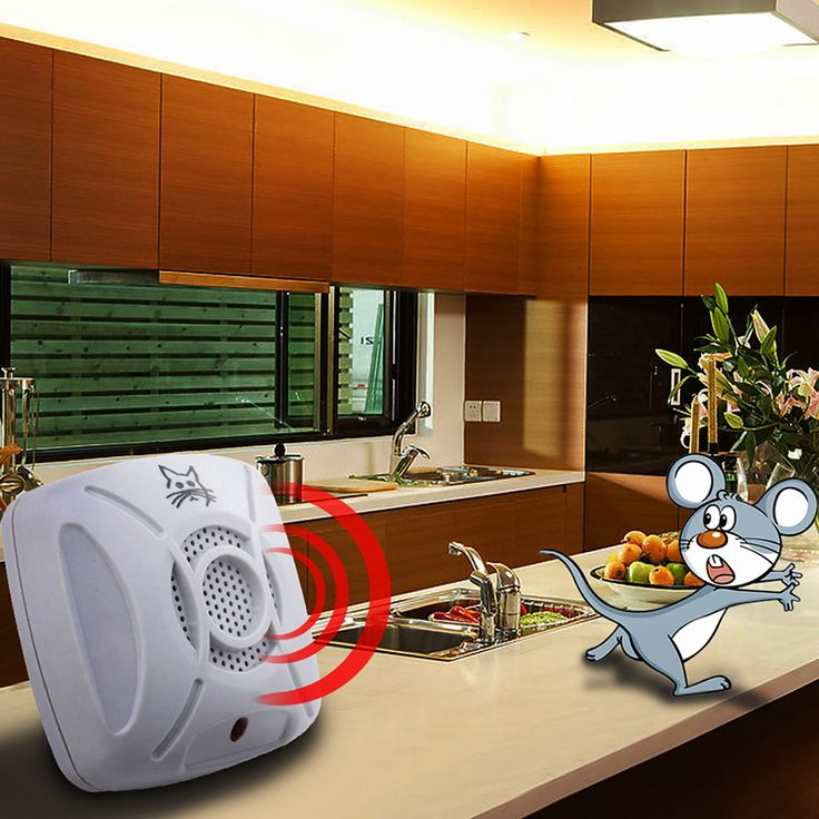 110v-240v AC 50/60Hz Ultrasonic Electronic Pest Control Repeller Home Garden Rat Mosquito Mouse Insect Killer EU/US Plug -  Get free shipping. This Online shop provide the information of finest and low cost which integrated super save shipping for 110v-240v AC 50/60Hz Ultrasonic Electronic Pest Control Repeller Home Garden Rat Mosquito Mouse Insect Killer EU/US Plug or any product promotions.  I think you are very lucky To be Get 110v-240v AC 50/60Hz Ultrasonic Electronic Pest Control…