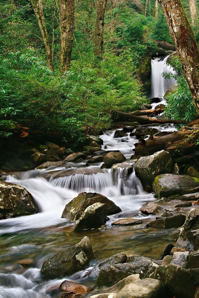125 Best Images About Hiking In The Smoky Mountains On