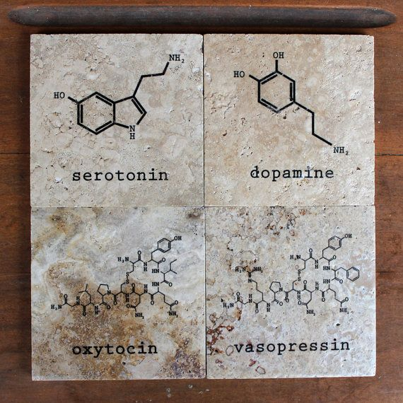 Chemistry of Love Coasters set of 4 by SeriousGooseDesigns on Etsy
