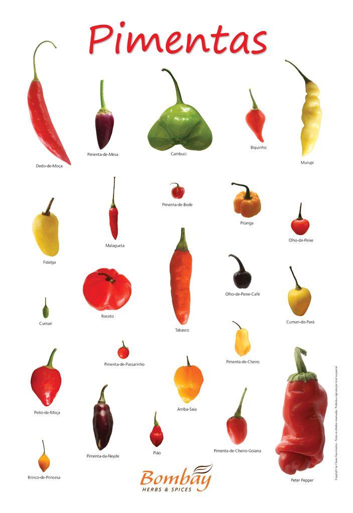 tipo de pimenta malagueta - Pesquisa Google