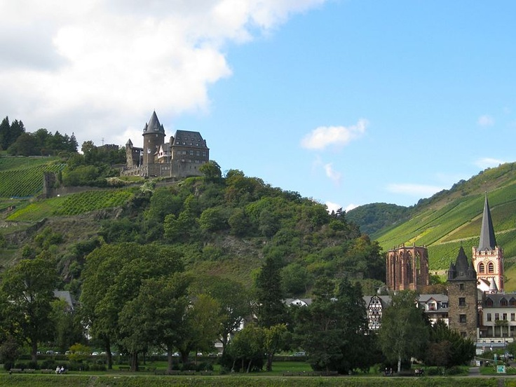 Another view of Bacharach with the old castle in the background. The castle is now a youth hostel.