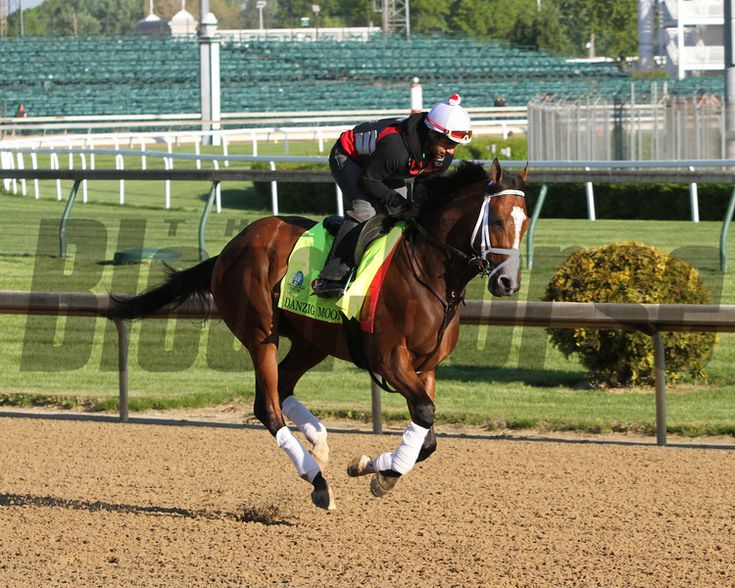Danzig Moon Churchill Downs Chad B. Harmon