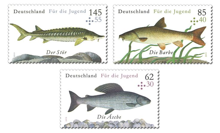 COLLECTORZPEDIA For the Youth: Freshwater Fish