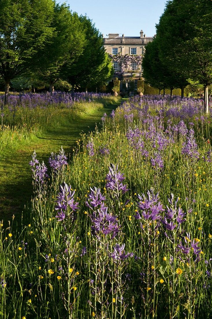 Let it grow, mow a path- Simplicity.  Highgrove House on the Duchy Home Farm.