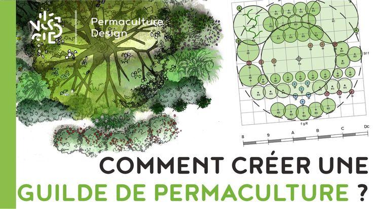 FT005-002 Comment créer une guilde de permaculture ?