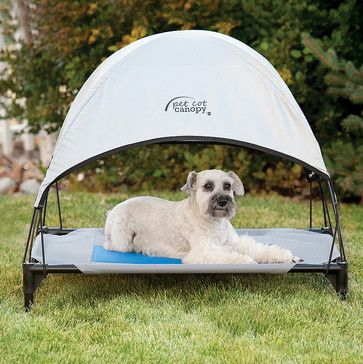 Cool Pet Cot Canopy Dog Bed - traditional - Gazebos - FRONTGATE