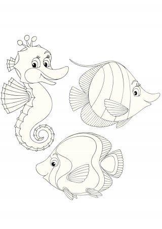 Coloriage mer : petit hippocampe et ses copains poissons