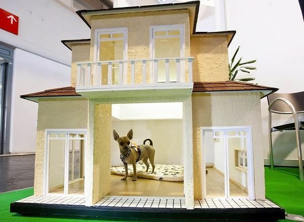20 best Ideas for making dog houses images on Pinterest | Dog houses ...