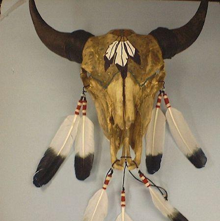 http://www.manataka.org/images/CMJ_art029_Buffalo_Skull.jpg