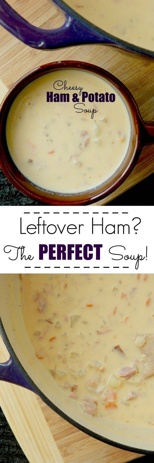 Cheesy Ham & Potato Soup...a warm, hearty bowl of comfort food!  Loaded with ham, potatoes, carrots and of course CHEESE!