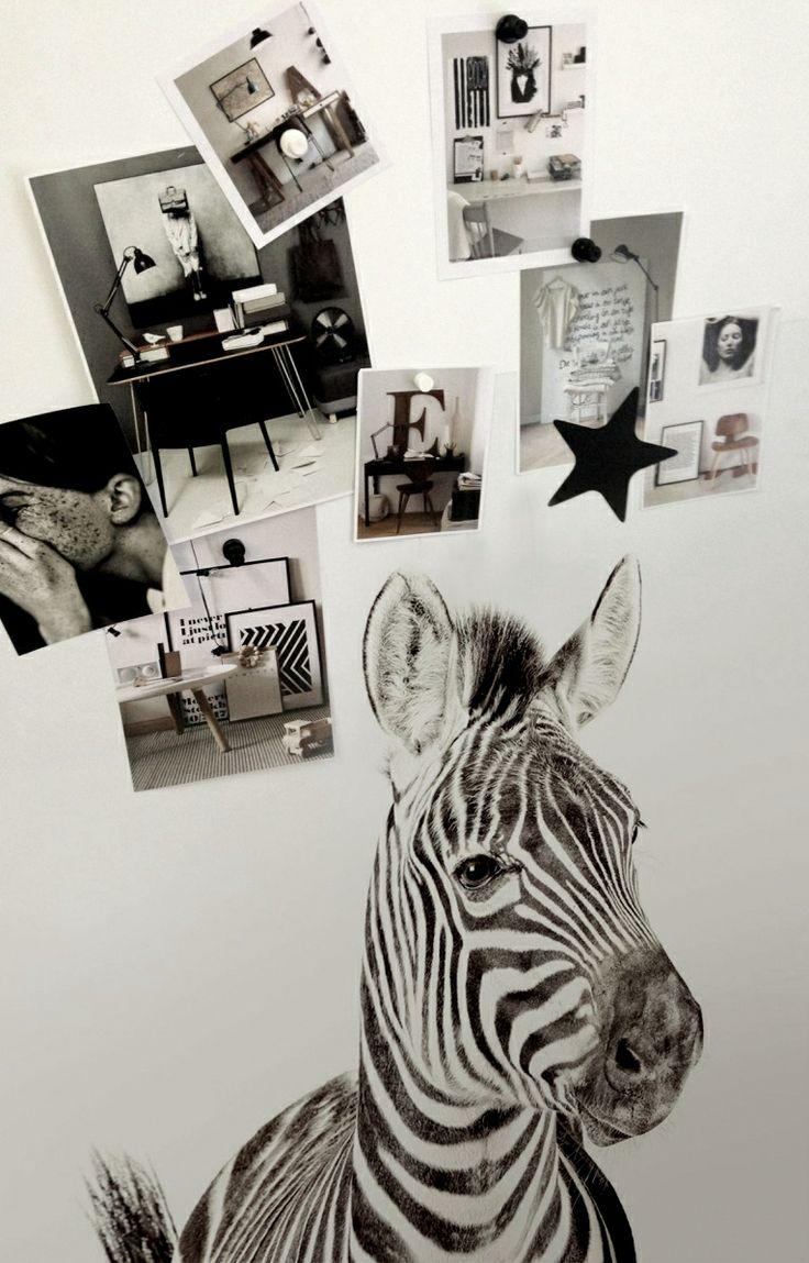 Zebra van magneet voor aan de muur; tof!