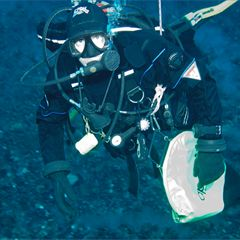 """SCIENTIST PROFILE. Dr Miles Lamare is a Lecturer in the Department of Marine Science at the University of Otago in Dunedin. He says, """"Working as a marine scientist is a big adventure. You can look at the Discovery Channel and see people doing this sort of thing but you can do it yourself if you really want to."""""""