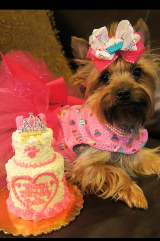 35 Best Birthday Girl Images On Pinterest 50th Birthday