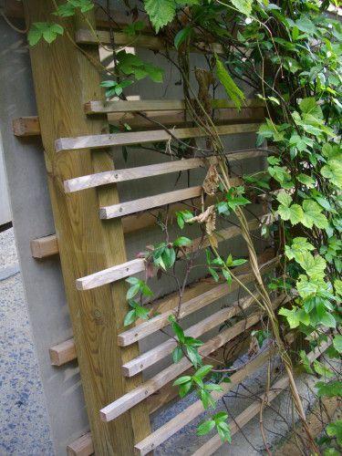 Un treillage en bois moderne et facile à construire. Des poteaux et tasseaux de bois pour la structure. Une mise en place irrégulière sur les poteaux et vous voila avec une structure originale et moderne. Réalisable même par un non bricoleur. Une manière...: