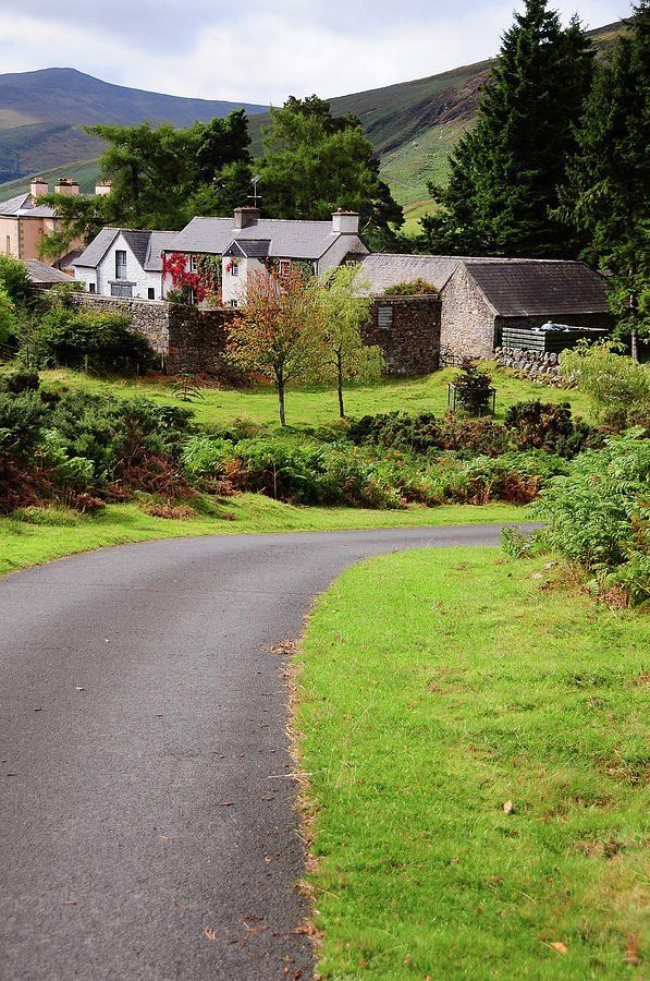 Way Home. Wicklow Hills. Ireland by Jenny Rainbow