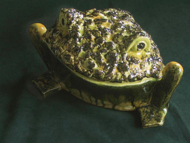 Лягушка золотая: