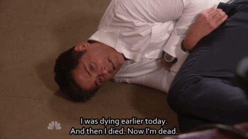 The best of Chris Traeger #gif