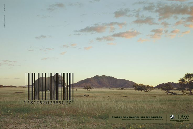 Stop the wildlife trade