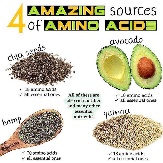 38633466fb82a523df624622181d6396 - How To Get All Your Amino Acids As A Vegan