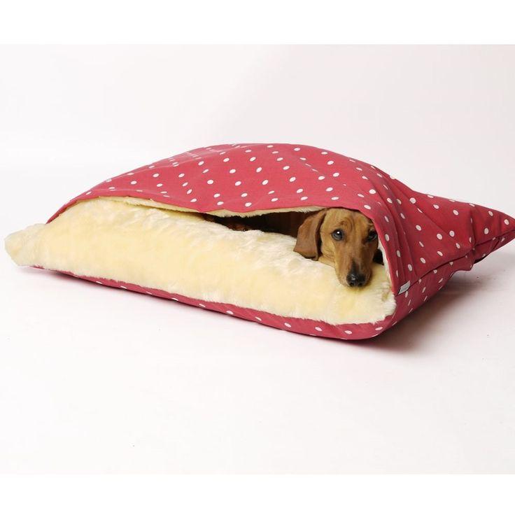 Cama com cobertor acoplado para pets. #gato #cachorro #pet                                                                                                                                                                                 Mais