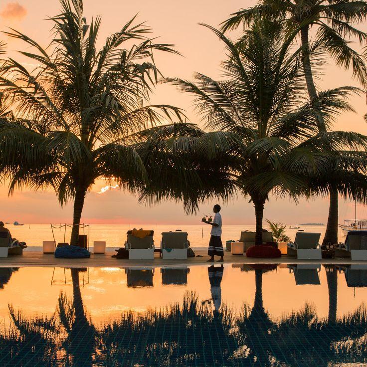 Meeru Island Resort & Spa Meerufenfushi, Maldives Budget tree water sky plant palm Sunset arecales light morning evening woody plant dusk palm family Sun Lake Sea Resort day