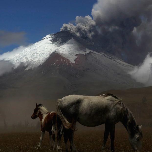 Il vulcano Cotopaxi, visto dal villaggio El Pedregal, in Ecuador. Le eruzioni sono cominciate ad aprile, dopo 138 anni di inattività