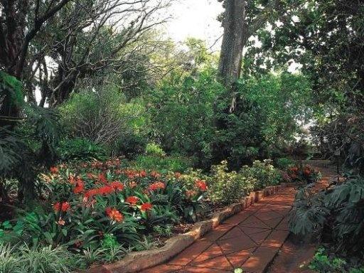 United Kingdom Great Britain - Highgrove Garden 9
