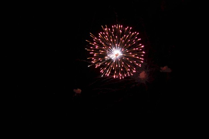 Animated Fireworks GIF Files | ... fireworks photo: Animated Fireworks 2 fireworkanamated_2singlewor.gif