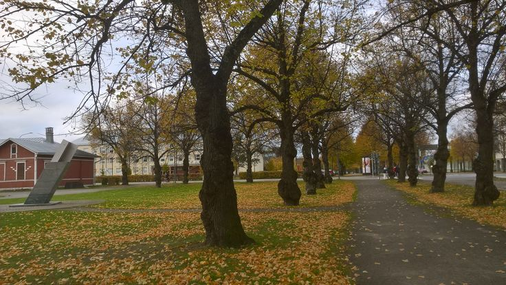 Joensuu, Finland. City centre in October