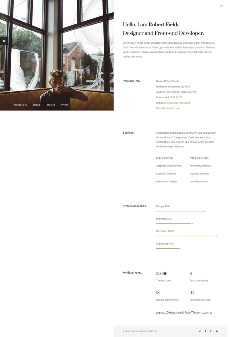 Node creative resume cv portfolio by double theme