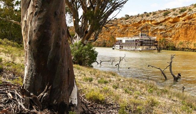 """Towering limestone cliffs, picturesque gorges, riverbanks lined with mallee scrub, red gum forests and century-old stone causeways"""" – Brooke Tolar, Captain Cook Cruises"""