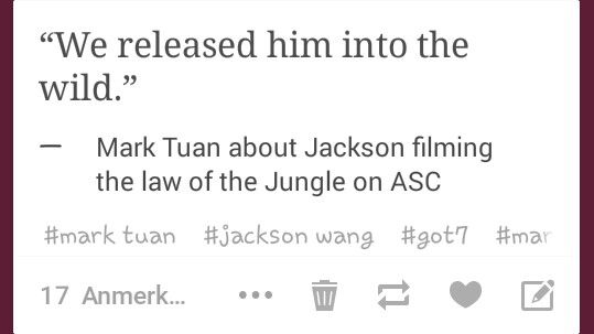 Mark tuan about jackson filming the law of the jungle