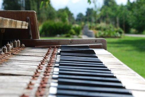 The Piano Nature