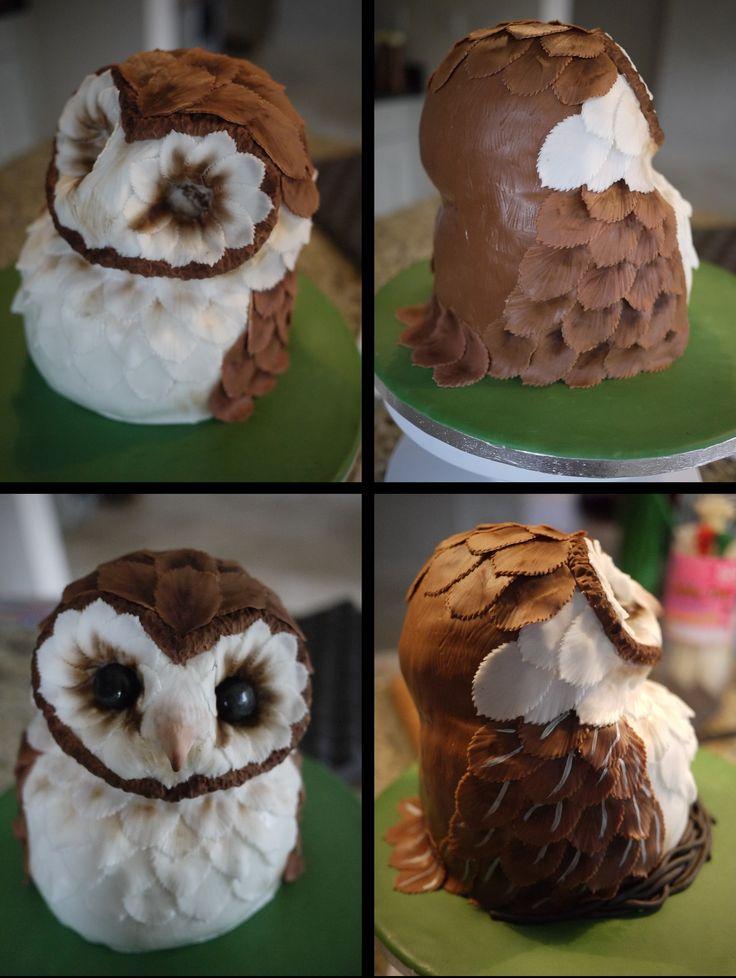Barn owl cake                                                                                                                                                                                 More