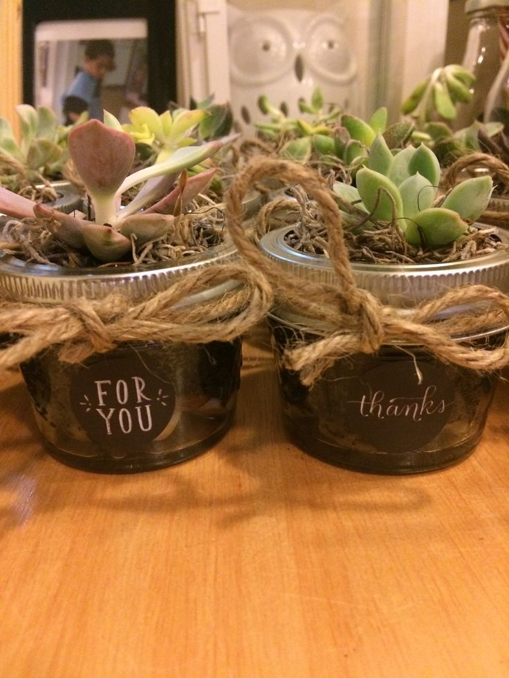 Made these succulent plants in a mini mason jar as a Thank you for my son's 1st communion.